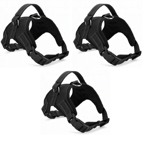 3 pack - Dog Harness