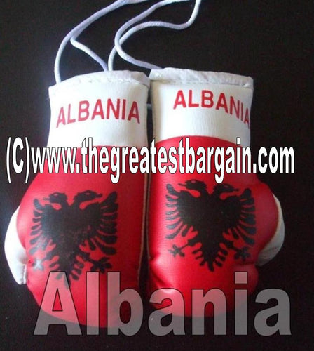 Albania Flag Mini Boxing Gloves
