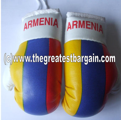 Armenia Flag Mini Boxing Gloves