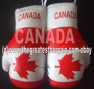 Canada Flag Mini Boxing Gloves