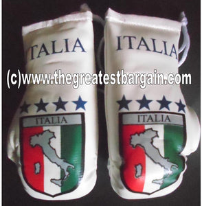 Italy/Italia Map Flag Mini Boxing Gloves