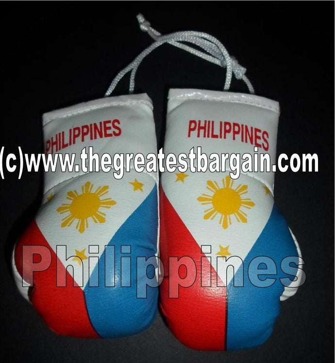 Philippines/Pinoy Flag Mini Boxing Gloves