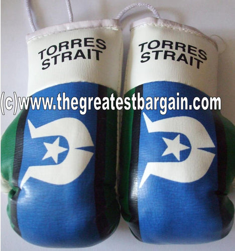 Torres Strait Flag Mini Boxing Gloves