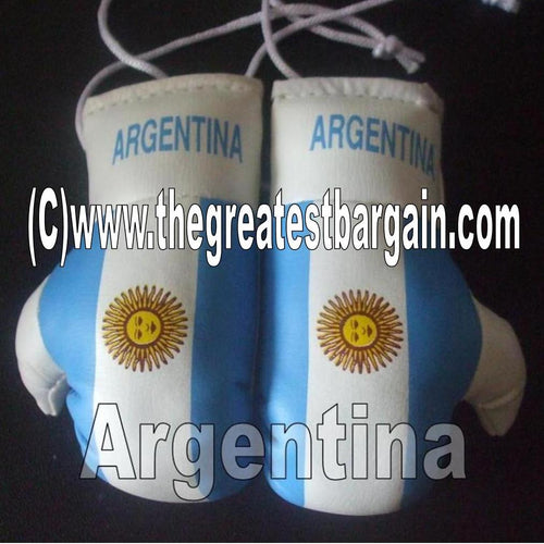 Argentina Flag Mini Boxing Gloves
