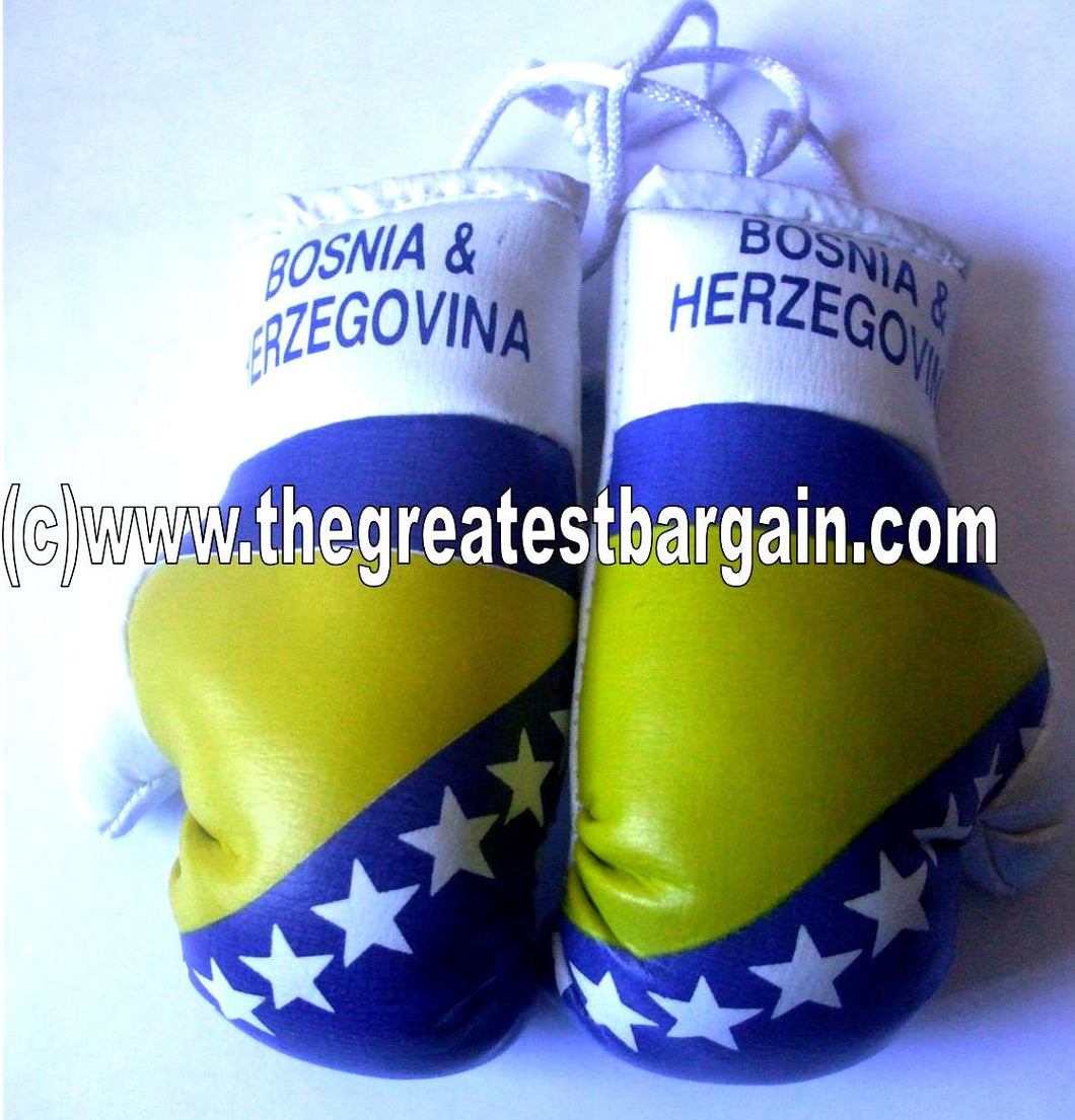 Bosnia and Herzegovina Flag Mini Boxing Gloves