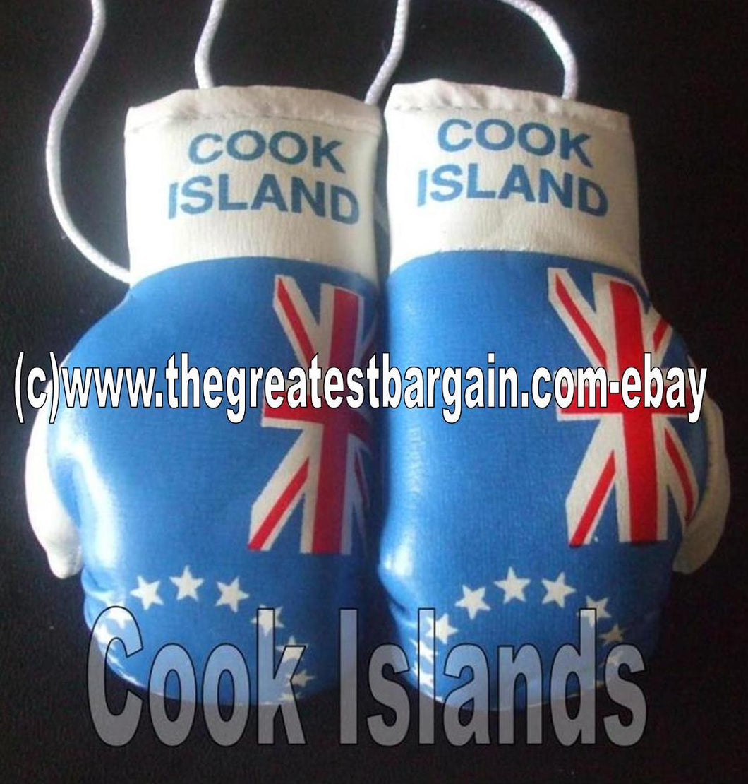 Cook Island Flag Mini Boxing Gloves