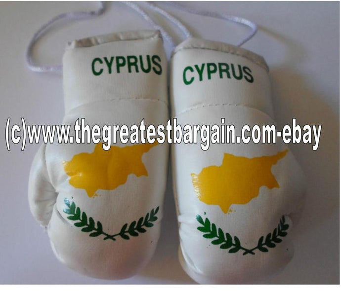Cyprus Flag Mini Boxing Gloves