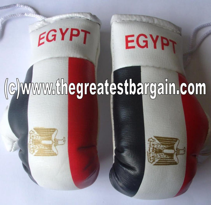 Egypt Flag Mini Boxing Gloves