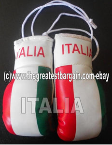 Italy/Italia Flag Mini Boxing Gloves