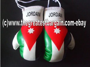 Jordan Flag Mini Boxing Gloves