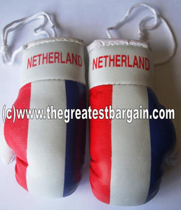 The Netherlands/Holland Flag Mini Boxing Gloves