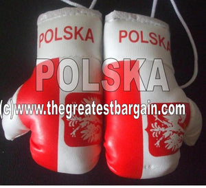 Poland Polska Flag Mini Boxing Gloves