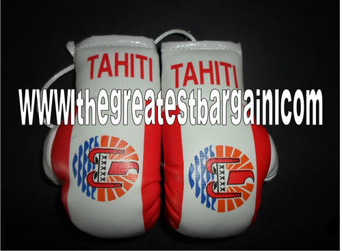 Tahiti Mini Boxing Gloves