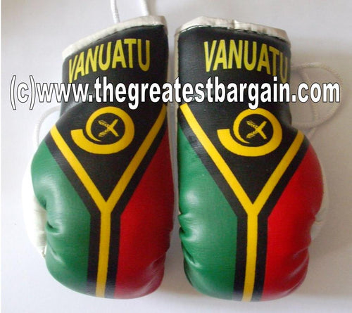 Vanuatu Flag Mini Boxing Gloves