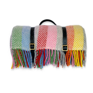 Rainbow Stripe Picnic Blanket