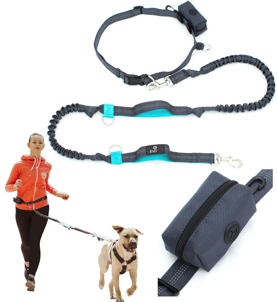 Premium Hands Free Dog Leash for Running/Walking/Hiking with Strong Dual Handle Bungees for Large Dogs up to 150 lb Bonus Poop Bags Dispenser