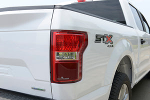 Ford F-150 Tail Light BSD Kit