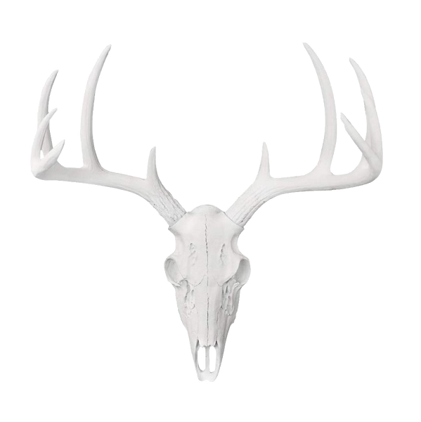 Animal Bust - White Faux