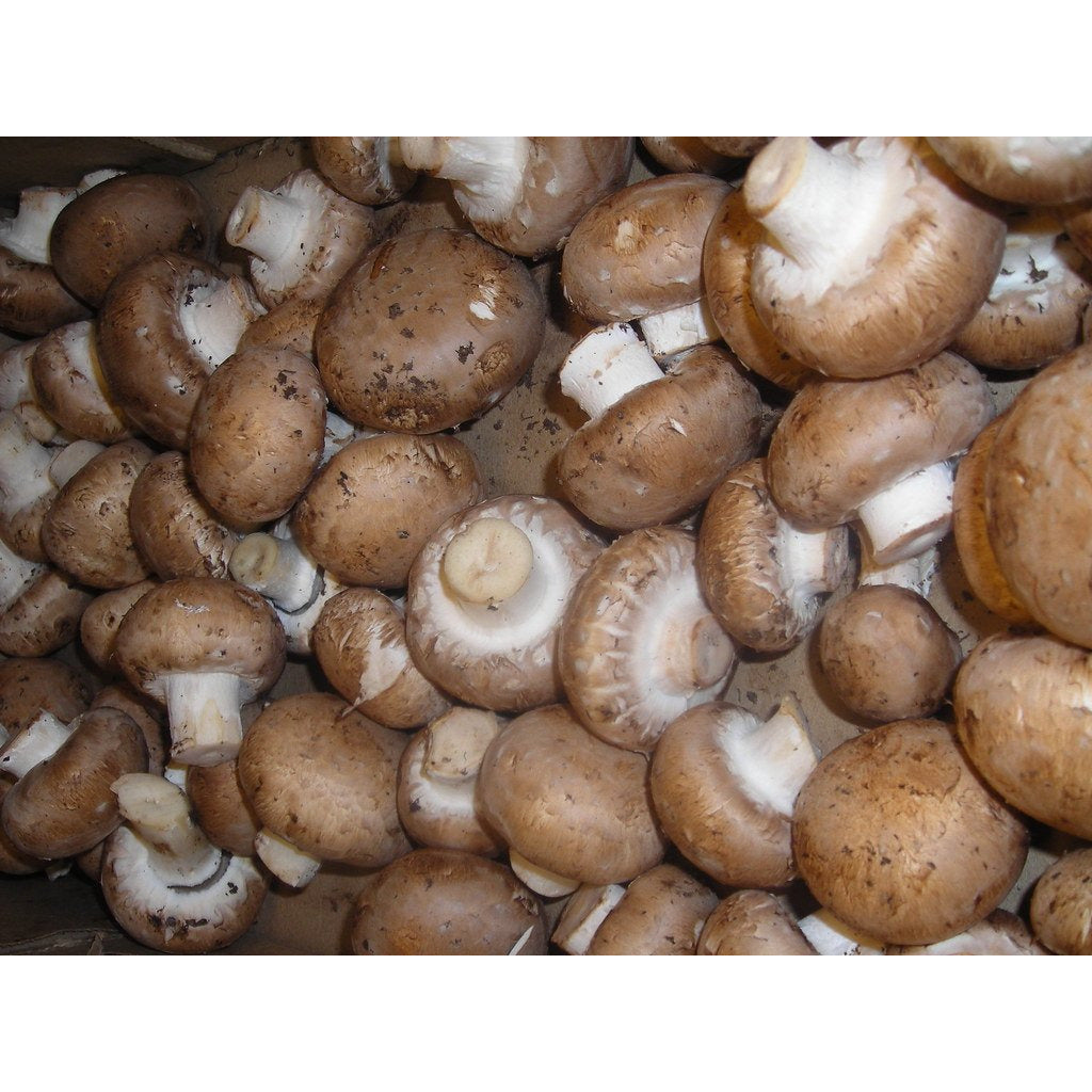 Mushrooms - Crimini Organic Ontario