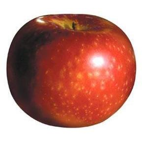 Apple - Paula Red Ontario