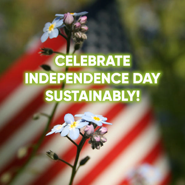 Celebrate Independence Day Sustainably with Carbon Neutral Shipping