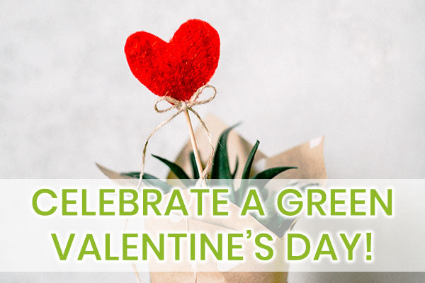 Celebrate Valentine's Day Sustainably with Eco-friendly & Sustainable Products