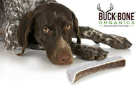 "Buck Bone Organics Elk Antlers For Dogs, Premium Grade A - Naturally Sourced From Shed Antler, Large Split Antlers 6-8"" In Length, Made in the USA - Eco Trade Company"