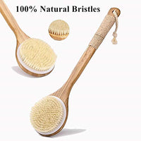 Wooden Handle Brush Back Scrubber - Eco Trade Company