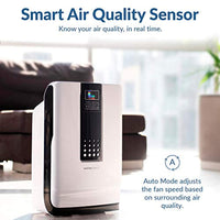 Air Purifier, 5-in-1 Large Room Air Cleaner & Deodorizer for Allergies, Pets, Asthma, Smokers, Odors - Eco Trade Company
