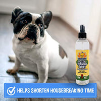 Dog Potty Training Spray | Indoor Outdoor Potty Here Training Aid for Dogs & Puppies | Puppy Potty Training for Potty Pads | Made in USA | 8oz - Eco Trade Company