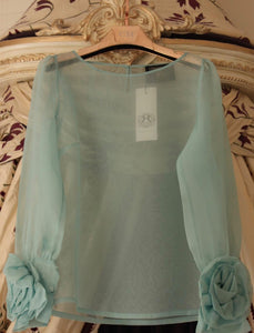Light gentle green blouse