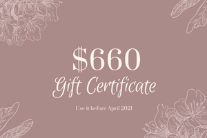 $660 Gift Certificate