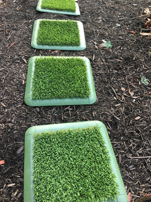 "Turf Tile - 15"" x 15"" - Plastic Drain Tiles with Secured Artificial Grass On Top - Simply Use as ""Stepping Stones"" on Top of Rocks, Dirts, Mulch, Sand, etc. -  (4 Pack) (#10610)"