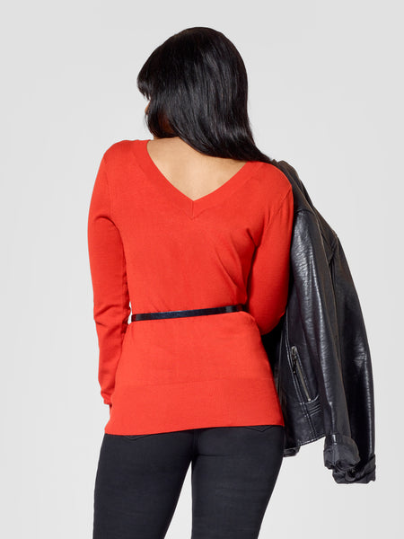 Tall V-Neck Sweater Backview