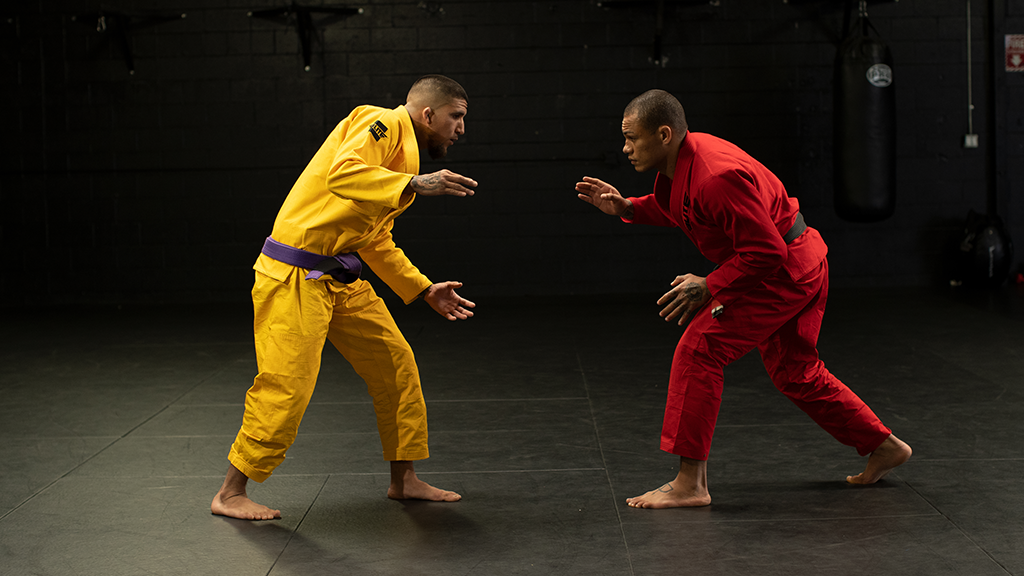 Why BJJ is Becoming the Future Face of MMA?
