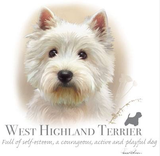 West Highland Terrier Tshirt - TshirtNow.net - 2
