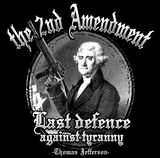 2nd Amendment Last Defence Tshirt - TshirtNow.net - 2