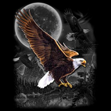 Eagle Wilderness tshirt - TshirtNow.net - 2