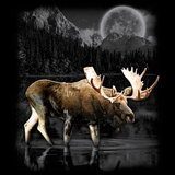Moose Wilderness tshirt - TshirtNow.net - 2