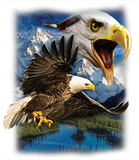 Eagle Mountain tshirt - TshirtNow.net - 2
