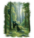 Spirits Of The Forest Wildlife tshirt - TshirtNow.net - 2