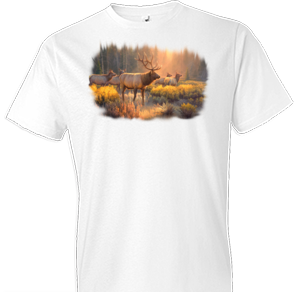 Morning Glory Elk Wildlife Tshirt - TshirtNow.net - 1