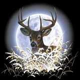Deer Moon Wildlife Tshirt - TshirtNow.net - 2