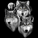 Three Wolves Portrait Tshirt - TshirtNow.net - 2
