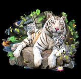 White Tiger Family Tshirt - TshirtNow.net - 2