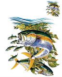 Yellowtail Fish Tshirt - TshirtNow.net - 2
