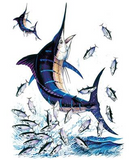 Blue Marlin 2 Fish Tshirt - TshirtNow.net - 2