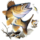 Walleye Tshirt - TshirtNow.net - 2