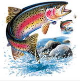 Rainbow Trout Tshirt with Oversized Print - TshirtNow.net - 2