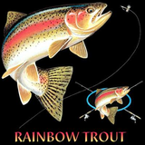 Rainbow Trout Combination Tshirt - TshirtNow.net - 2